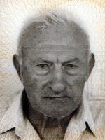 Jozo Radić